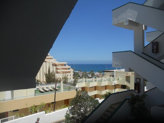 Apartamentos El Palmar: view from back with palm trees cut down