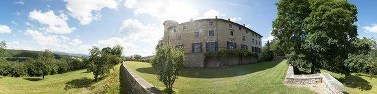 Chateau De Marigna: Château