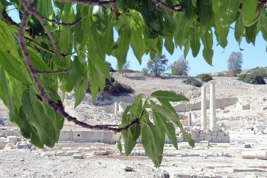 Amathus Ruins: Panoramica
