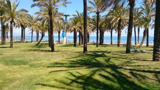 La Carihuela: plage