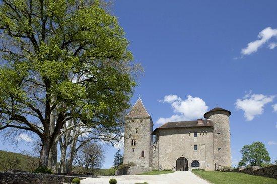 Chateau De Marigna: Vue générale