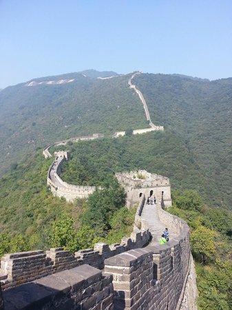 Gran Muralla China en Mutianyu: view from Tower - maybe no 8