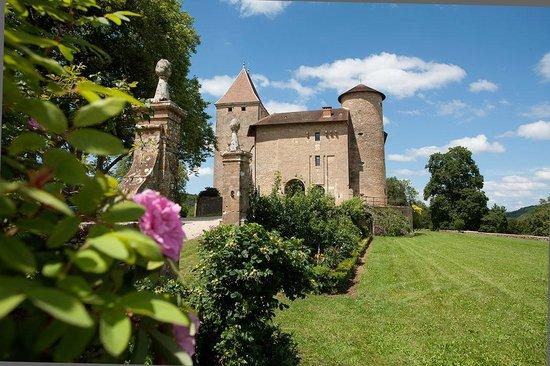 Chateau De Marigna: Terrasse & Jardin