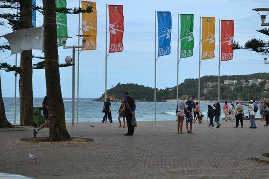Manly Beach : Пляж Мэнли