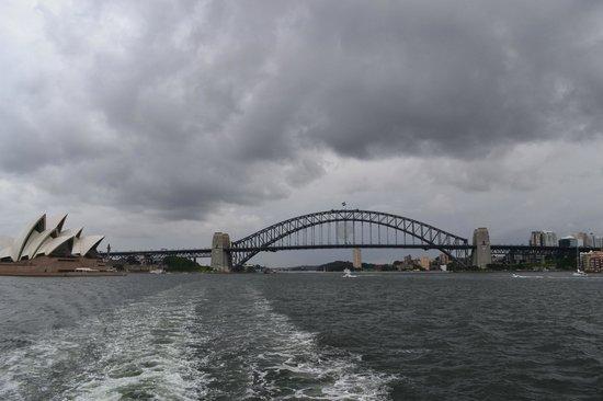 Sydney Ferries: Вид на Сиднейскую гавань с ферри