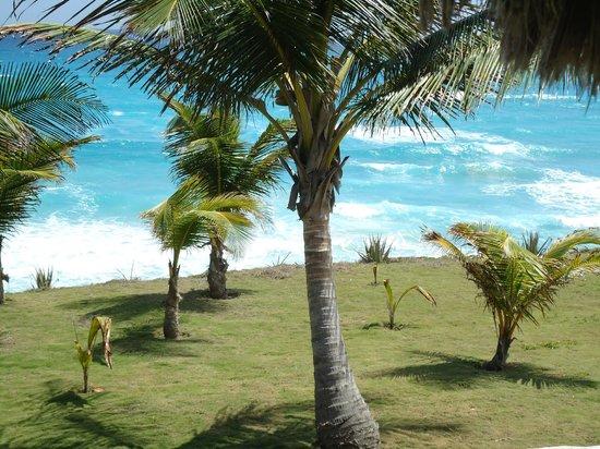 Hotel Playazul : Preciosa vista del mar