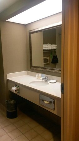 Hampton Inn and Suites Dallas - DFW Airport North / Grapevine: Bathroom