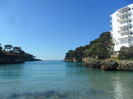 Aparthotel Ferrera Blanca: cala ferrera beach