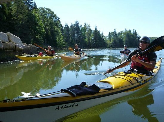 Pinniped Kayak : Quality equipment and student-centered instruction for all levels.