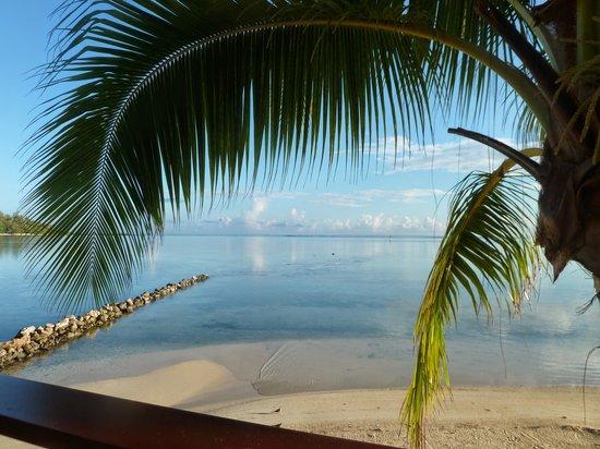 Hotel Les Tipaniers: plage de l'hôtel