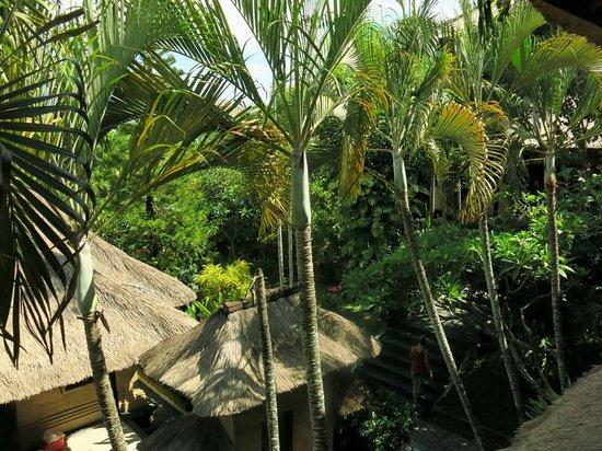 Bali Agung Village: Бунгало