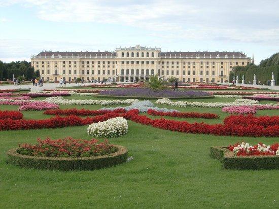 Schonbrunn  Palace: 庭園から宮殿