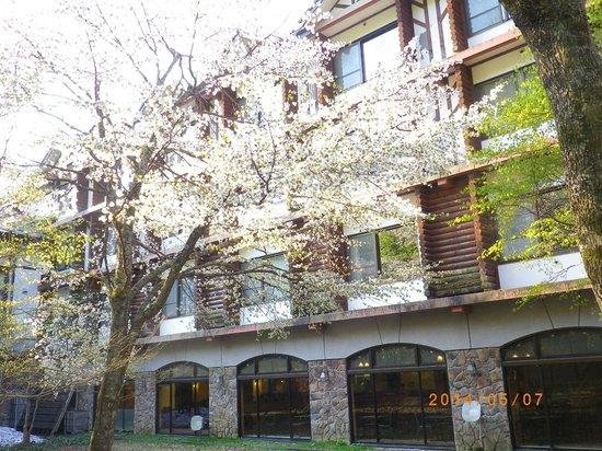 Hoshino Resorts Oirase Keiryu Hotel: 朝の散歩