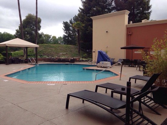 Hilton Concord: Pool