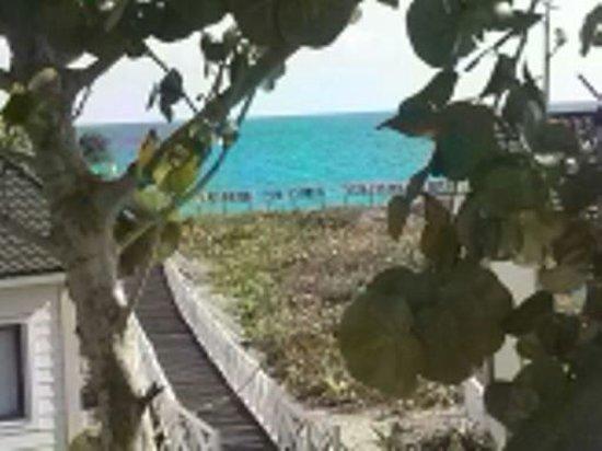 Sol Cayo Santa Maria : Room view