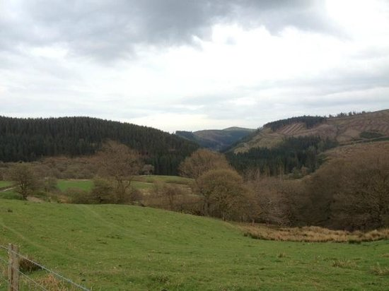 Trallwm Forest Cottages: View from Trawsgyrch