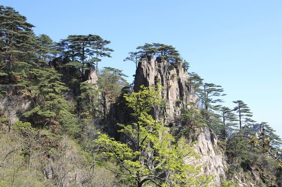 Mt. Huangshan (Yellow Mountain): le site