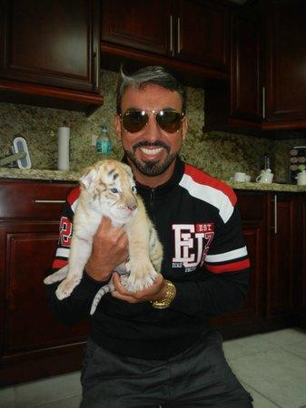Zoological Wildlife Foundation: Tigre (pago separado)