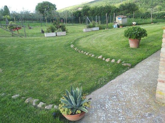 Agriturismo Due Ponti: Giardino