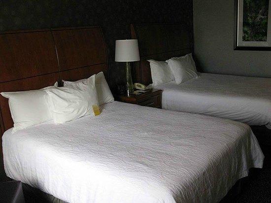 Hilton Garden Inn Springfield: Hilton Garden Springfield MA - 2 Queen Room