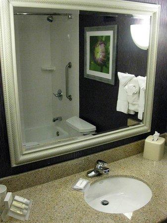 Hilton Garden Inn Springfield: Hilton Garden Springfield MA - Queen Rm Bathroom