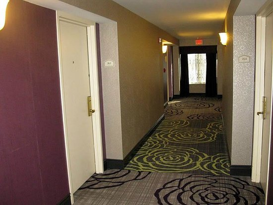 Hilton Garden Inn Springfield: Hilton Garden Springfield MA - 2nd Floor Hallway
