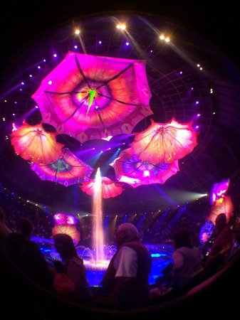 Le Reve - The Dream : The end