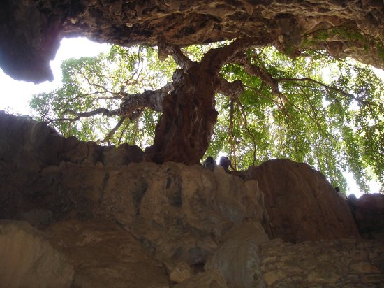 Parque Nacional Grutas de Cacahuamilpa: Regard vers la lumière - Avril 2011
