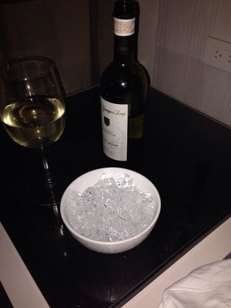 Seda Centrio: The bucket of ice for my warm white wine!!