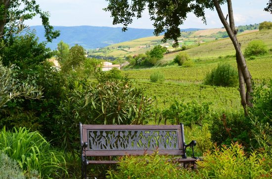 La Moneze Basse: The grounds with views of nearby vineyards
