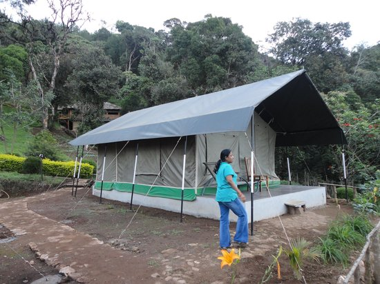 Nature Zone Resort: Tents - very comfortable