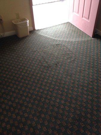 Americas Best Value Inn: Carpeting in bad repair