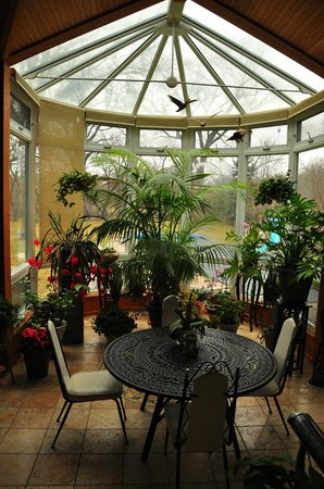 Beechmount Bed and Breakfast: The Beechmount's conservatory, where breakfast is served each morning.
