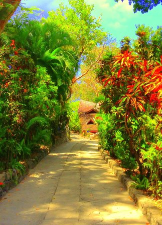 Jade Mountain Resort : The steep walk to the beach. Not that bad of a walk, or your butler will get a car for you.