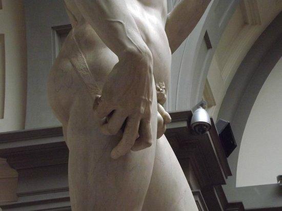 Galleria dell'Accademia : Le vene su mano e braccio
