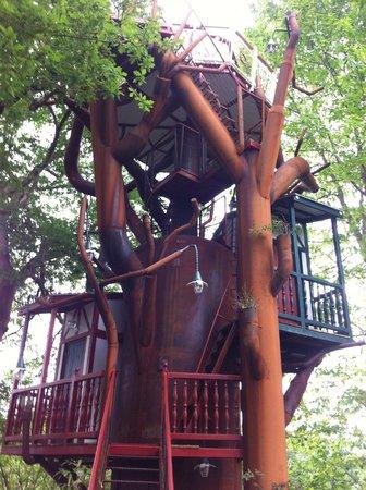 Maison d'hôtes Rosa Enia : L'arbre aux oiseaux