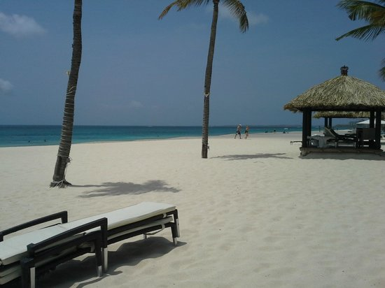 Bucuti & Tara Beach Resort Aruba : Beach View