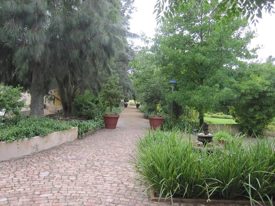 Blue Gum Country Estate: The beautiful gardens