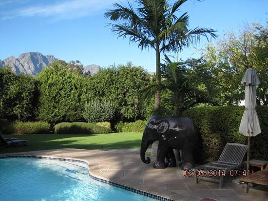 Avondrood Guest House : Pool view