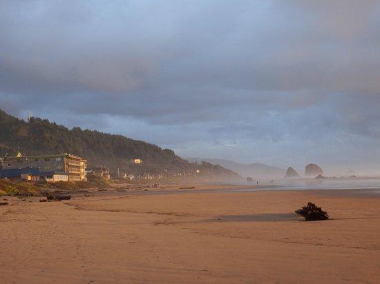 Tolovana Inn: Hotel vom Strand