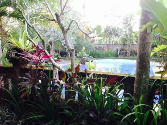 Puri Asri Villa & Spa : vue de notre terrasse
