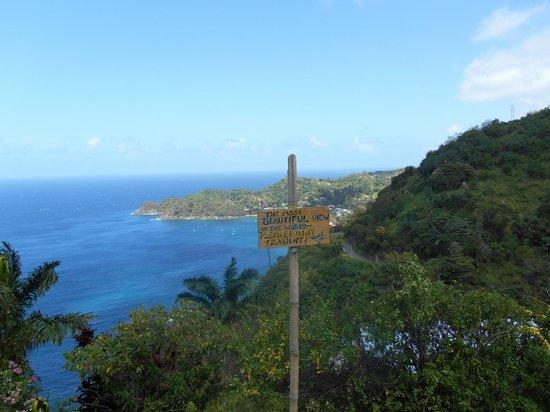 Coco Reef Resort & Spa Tobago : Round island trip