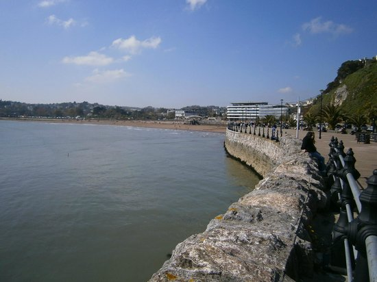 Premier Inn Torquay Hotel: The hotel is in the distance, but can get an idea of its location