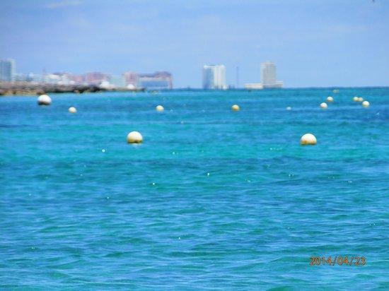 Dolphin Discovery : Hyatt Regency in the distance