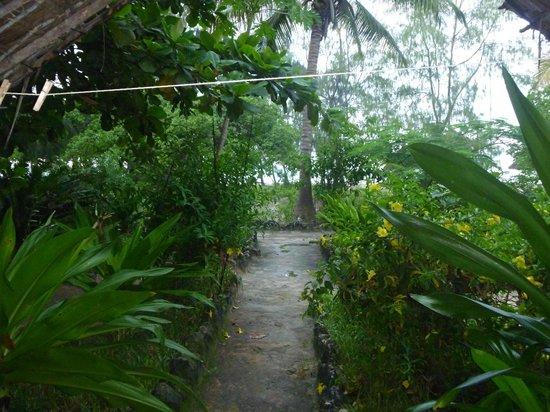 Ndame Beach Lodge Zanzibar : View from the room