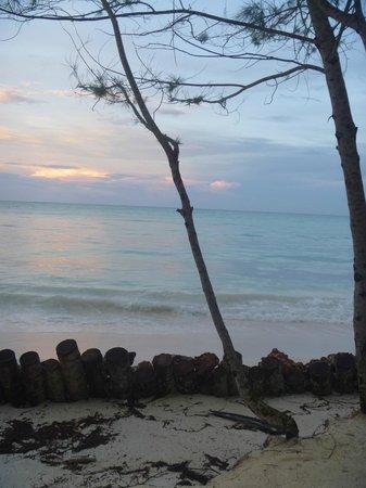 Ndame Beach Lodge Zanzibar: Beach