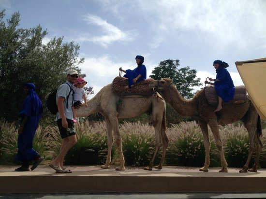 Pullman Marrakech Palmeraie Resort and Spa : Kids club