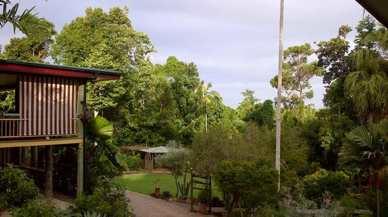 Licuala Lodge: Grounds