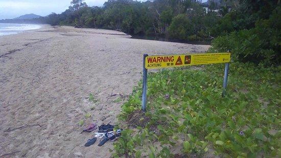 Palm Cove Beach: Warning Crocks 5 people 0