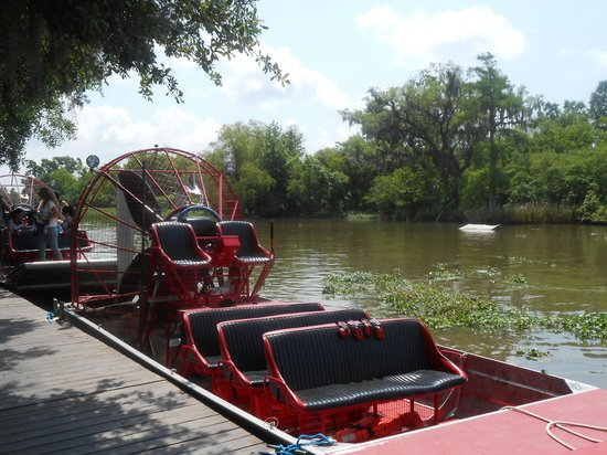 Jean Lafitte Swamp Tours: Small Airboat
